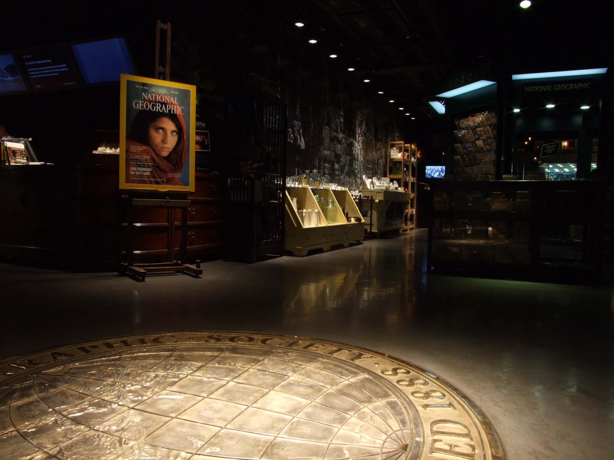 National Geographic Store Regent Street London | A Great Brand Experience