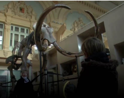 Woolly mammoth, great marketing campaign